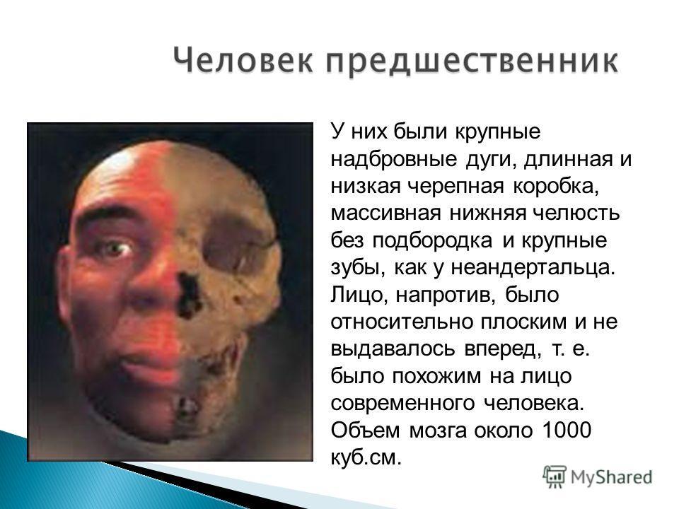 У них были крупные надбровные дуги, длинная и низкая черепная коробка, массивная нижняя челюсть без подбородка и крупные зубы, как у неандертальца. Лицо, напротив, было относительно плоским и не выдавалось вперед, т. е. было похожим на лицо современн