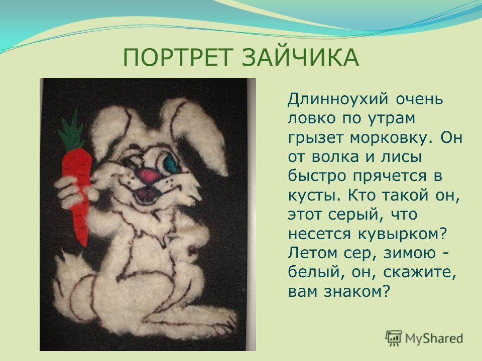 ПОРТРЕТ ЗАЙЧИКА Длинноухий очень ловко по утрам грызет морковку. Он от волка и лисы быстро прячется в кусты. Кто такой он, этот серый, что несется кувырком? Летом сер, зимою - белый, он, скажите, вам знаком?