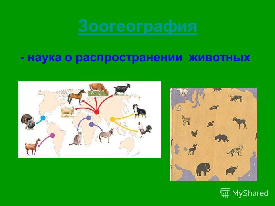Зоогеография - наука о распространении животных