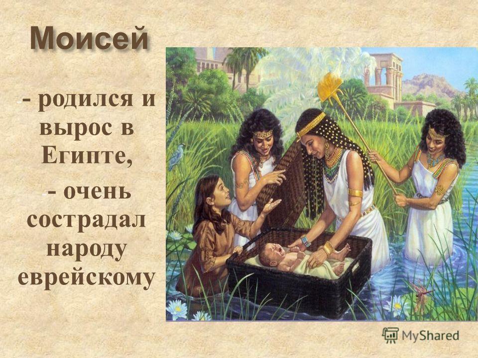 Моисей - - родился и вырос в Египте, - - очень сострадал народу еврейскому