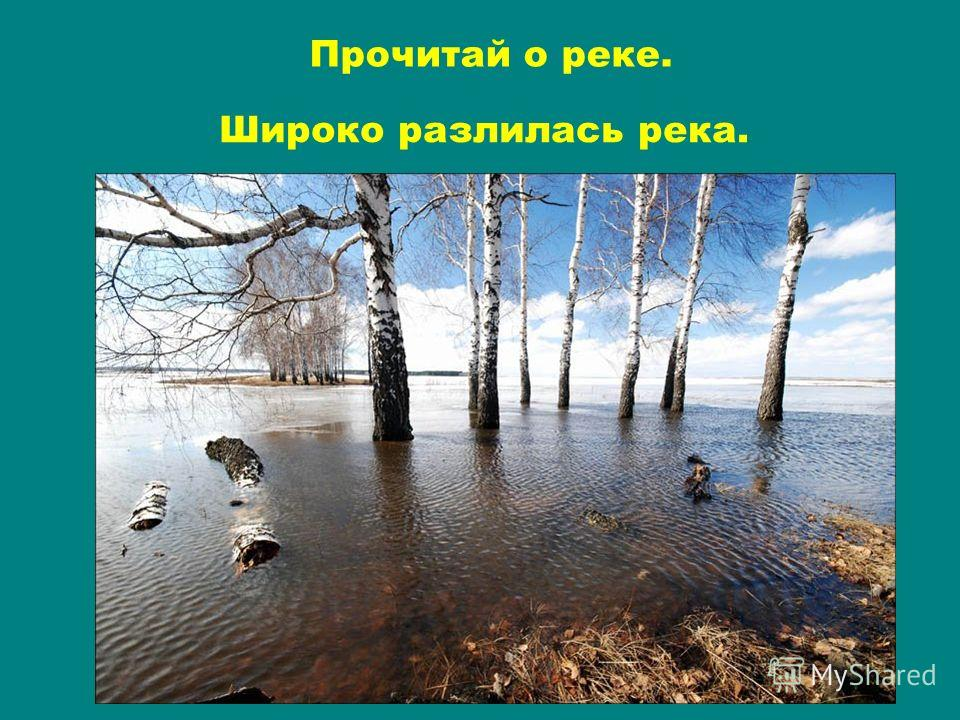 Широко разлилась река. Прочитай о реке.