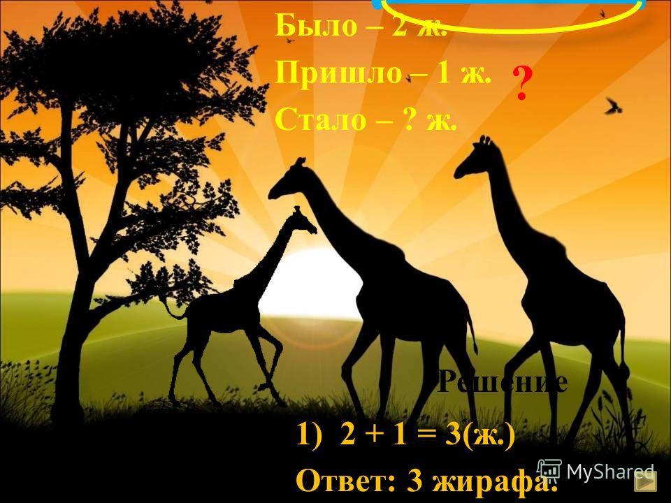 Было – 2 ж. Пришло – 1 ж. Стало – ? ж. Решение 1) 2 + 1 = 3(ж.) Ответ: 3 жирафа. ? 2 ж. 1 ж.