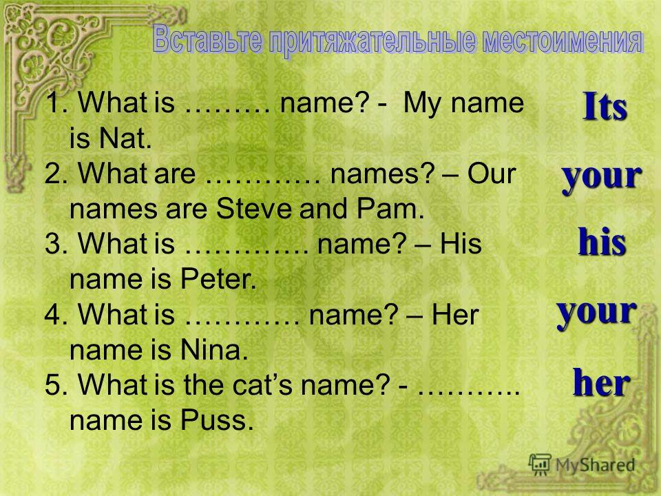 Its your his her your 1. What is ……… name? - My name is Nat. 2. What are ………… names? – Our names are Steve and Pam. 3. What is …………. name? – His name is Peter. 4. What is ………… name? – Her name is Nina. 5. What is the cats name? - ……….. name is Puss.