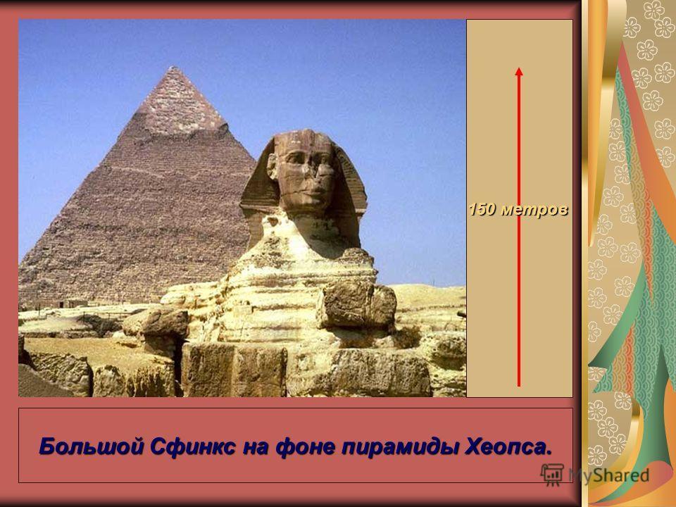 Большой Сфинкс на фоне пирамиды Хеопса. 150 метров