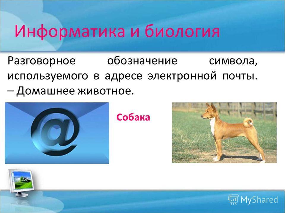 Информатика и биология Разговорное обозначение символа, используемого в адресе электронной почты. – Домашнее животное. Собака