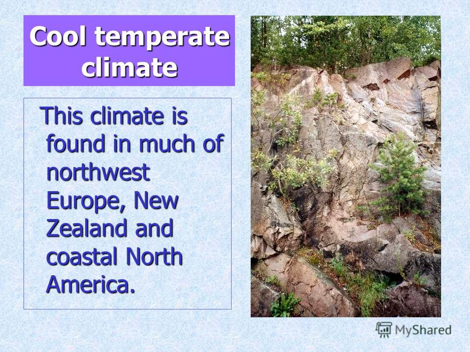 Cool temperate climate This climate is found in much of northwest Europe, New Zealand and coastal North America. This climate is found in much of northwest Europe, New Zealand and coastal North America.