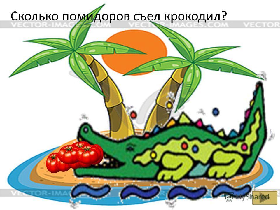 Сколько помидоров съел крокодил?