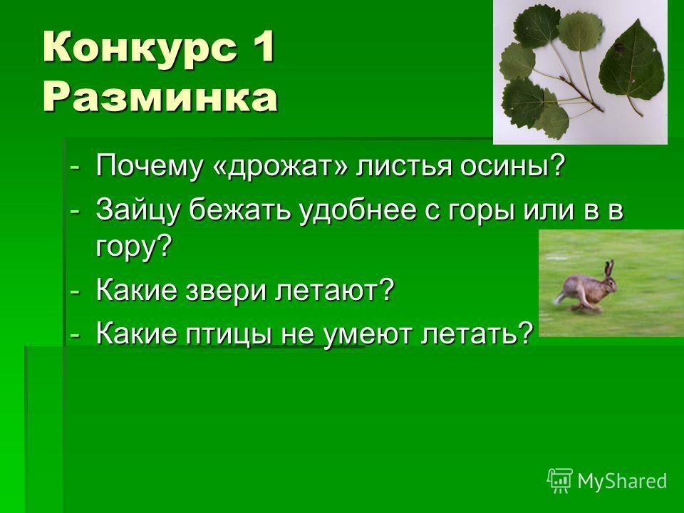 Конкурс 1 Разминка -Почему «дрожат» листья осины? -Зайцу бежать удобнее с горы или в в гору? -Какие звери летают? -Какие птицы не умеют летать?