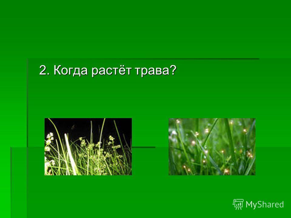 2. Когда растёт трава?