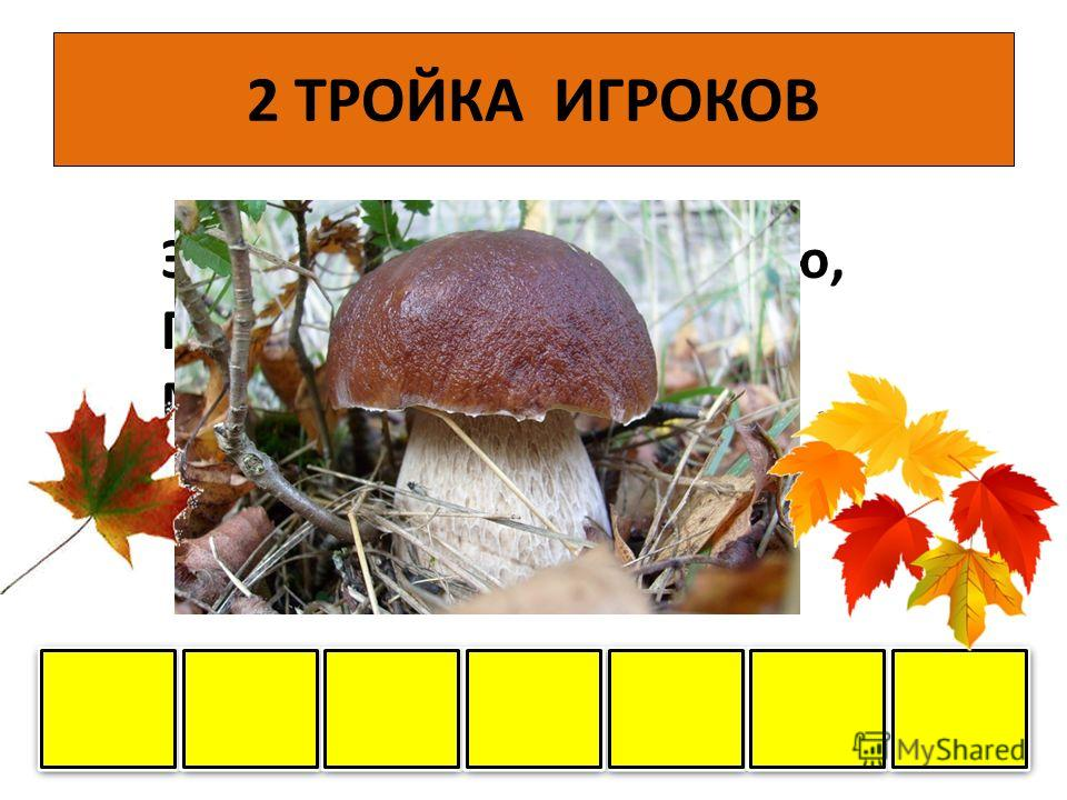 1 ТРОЙКА ИГРОКОВ Нет грибов дружней, чем эти, - Знают взрослые и дети - На пеньках растут в лесу, Как веснушки на носу О О П П Я Я Т Т А А