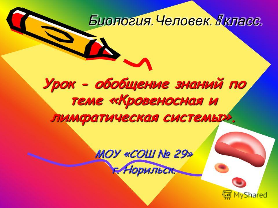 Биология. Человек. 8 класс. Урок - обобщение знаний по теме «Кровеносная и лимфатическая системы». МОУ «СОШ 29» г. Норильск.