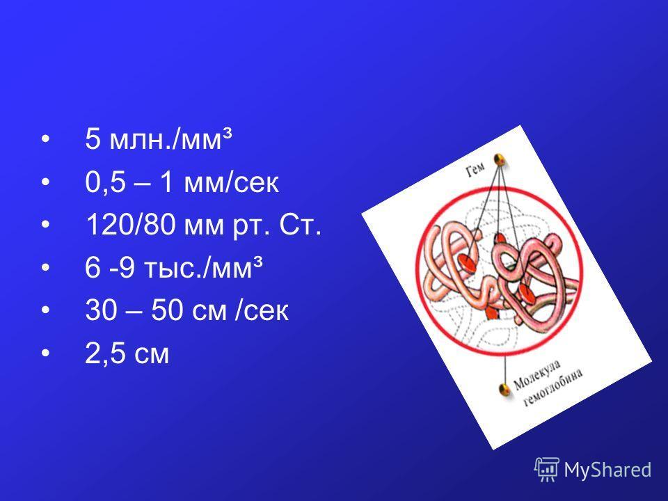 5 млн./мм³ 0,5 – 1 мм/сек 120/80 мм рт. Ст. 6 -9 тыс./мм³ 30 – 50 см /сек 2,5 см