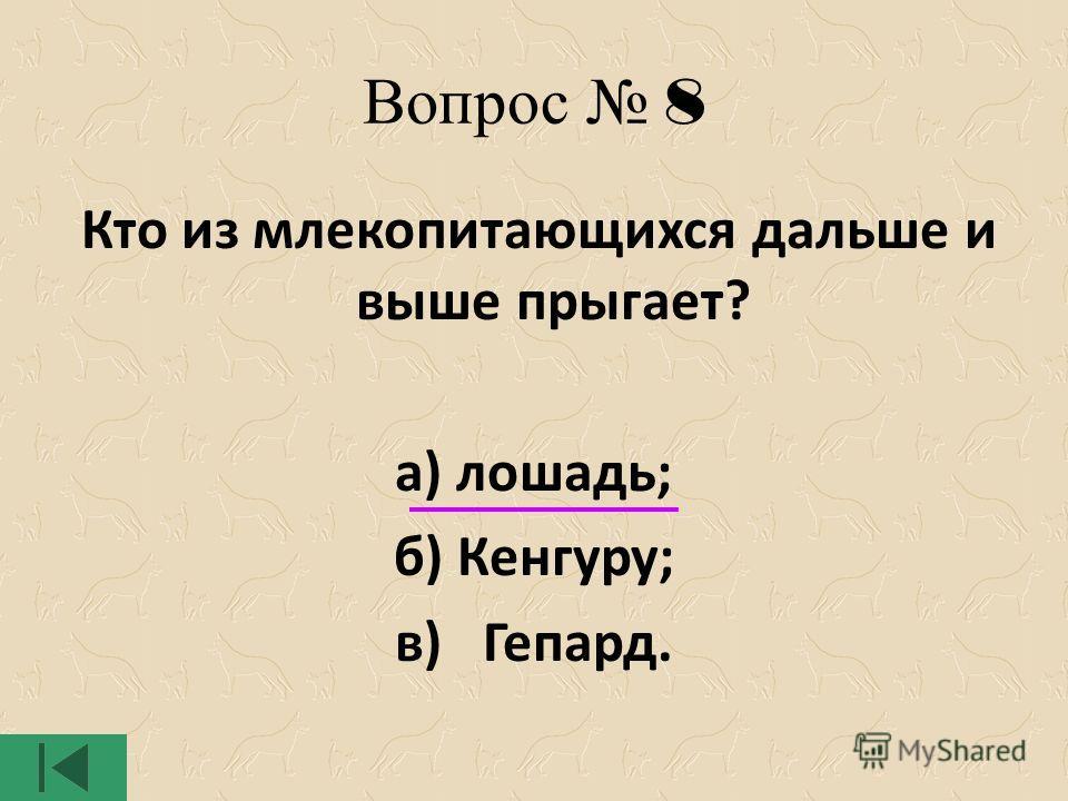 Вопрос 8 Кто из млекопитающихся дальше и выше прыгает? а) лошадь; б) Кенгуру; в) Гепард.