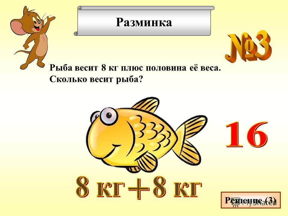 Разминка Рыба весит 8 кг плюс половина её веса. Сколько весит рыба? Решение (3)