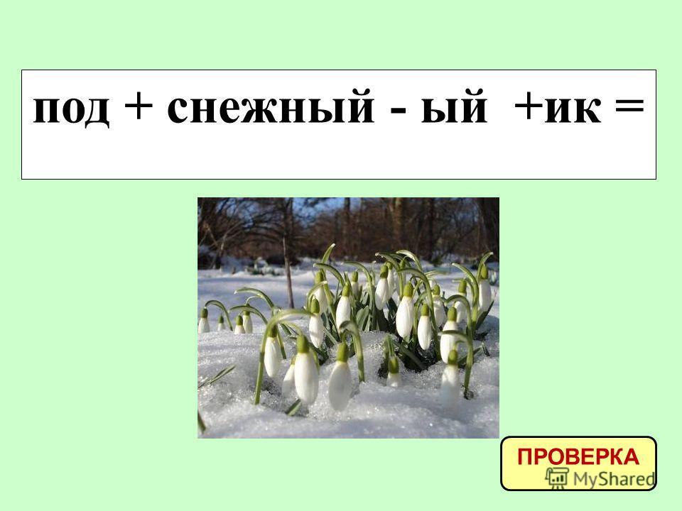 под + снежный - ый +ик = ПРОВЕРКА