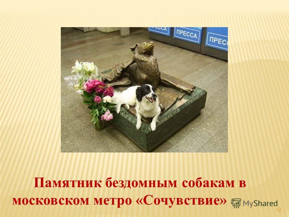 12 Памятник бездомным собакам в московском метро «Сочувствие»