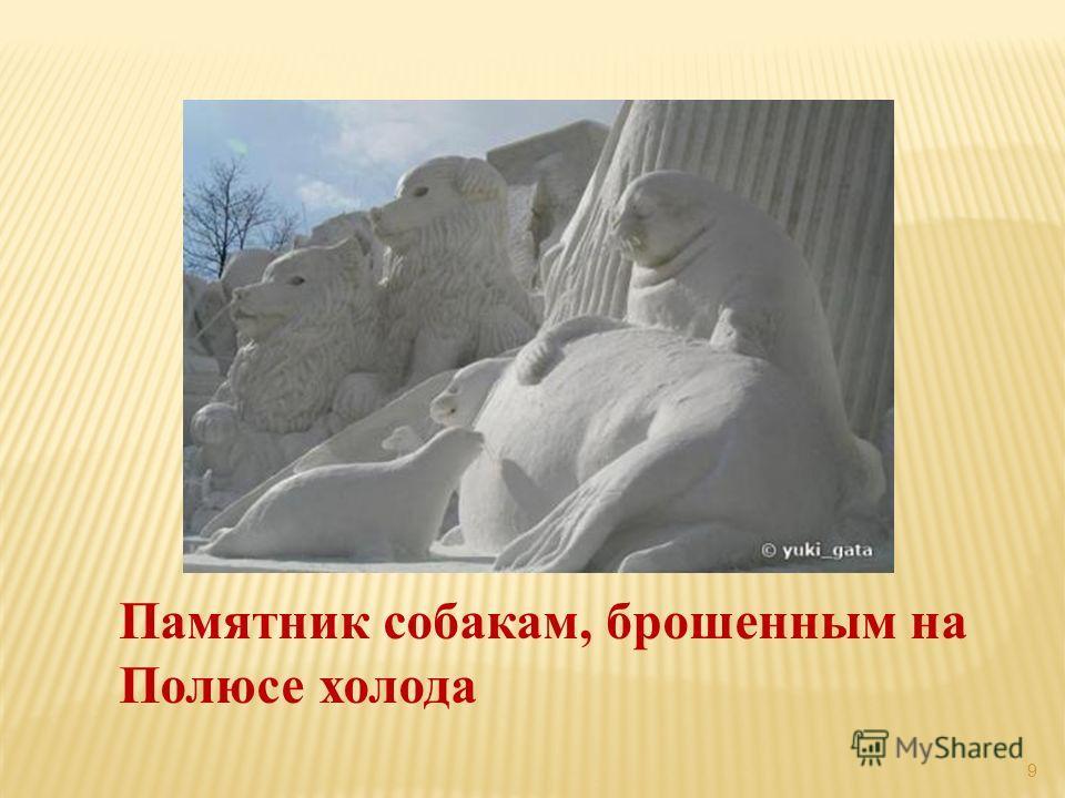 9 Памятник собакам, брошенным на Полюсе холода