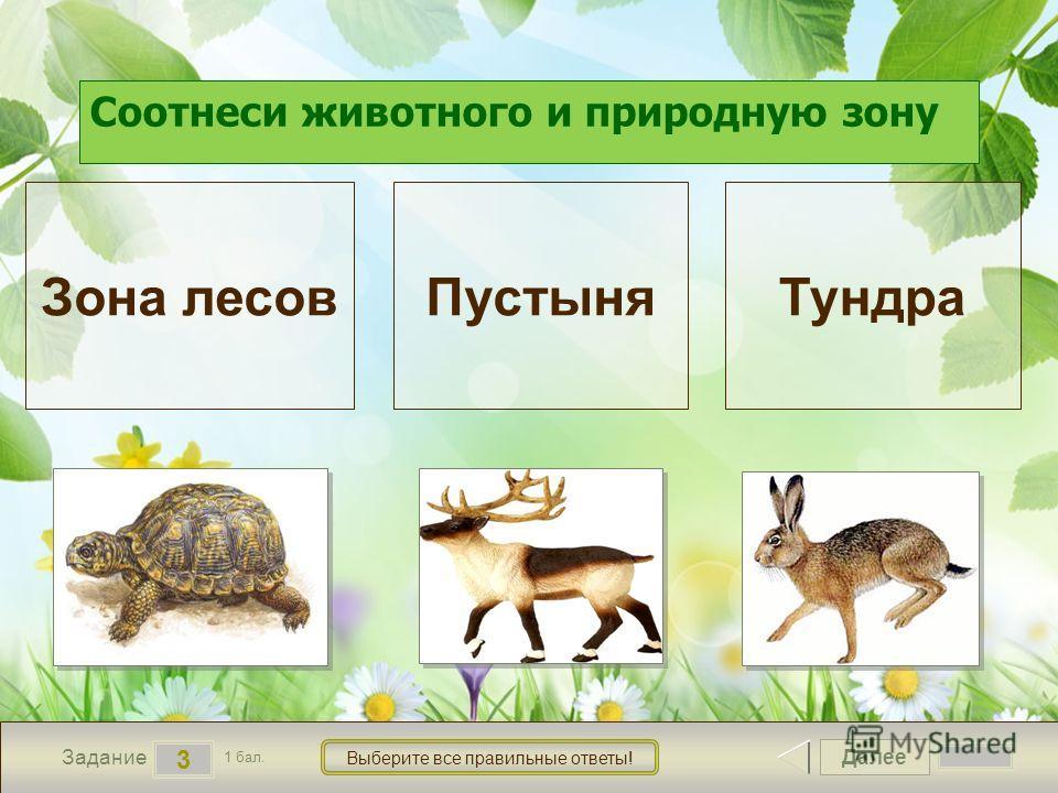 Далее 3 Задание 1 бал. Выберите все правильные ответы! Зона лесов ПустыняТундра Соотнеси животного и природную зону 1 1