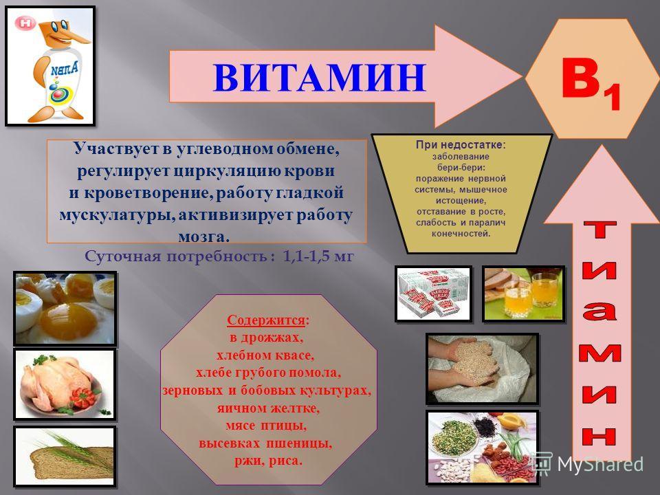 ВИТАМИН B1B1 Участвует в углеводном обмене, регулирует циркуляцию крови и кроветворение, работу гладкой мускулатуры, активизирует работу мозга. Содержится: в дрожжах, хлебном квасе, хлебе грубого помола, зерновых и бобовых культурах, яичном желтке, м