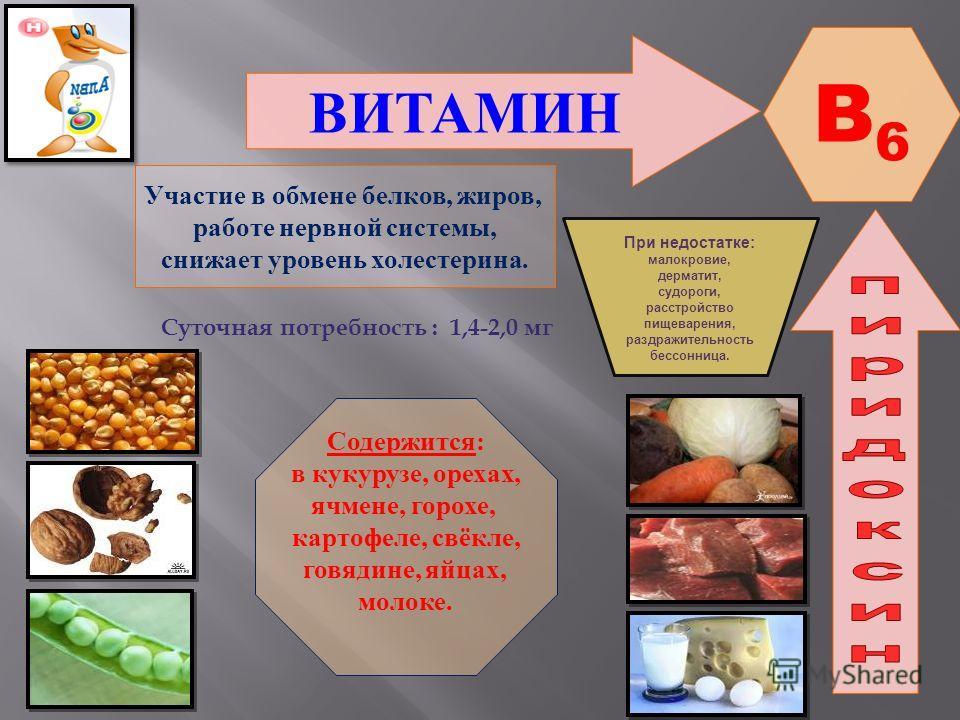 ВИТАМИН B6B6 Участие в обмене белков, жиров, работе нервной системы, снижает уровень холестерина. Содержится: в кукурузе, орехах, ячмене, горохе, картофеле, свёкле, говядине, яйцах, молоке. При недостатке : малокровие, дерматит, судороги, расстройств