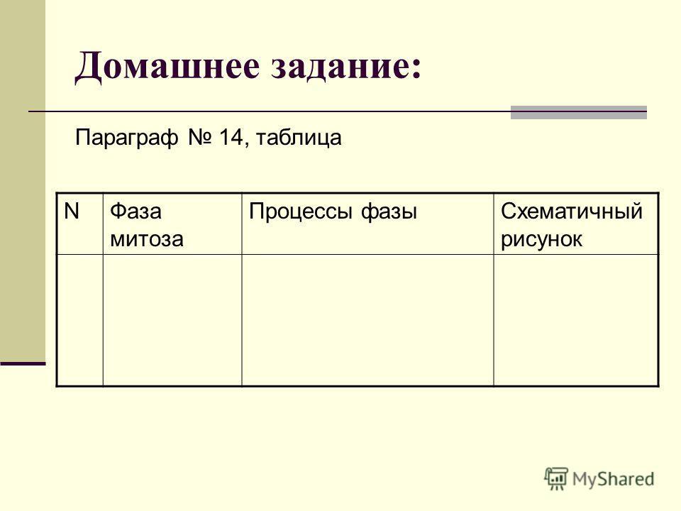 Домашнее задание: Параграф 14, таблица NФаза митоза Процессы фазы Схематичный рисунок