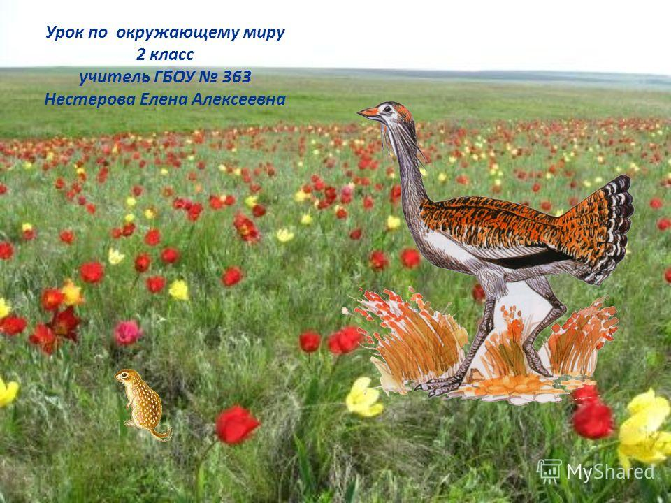 Урок по окружающему миру 2 класс учитель ГБОУ 363 Нестерова Елена Алексеевна