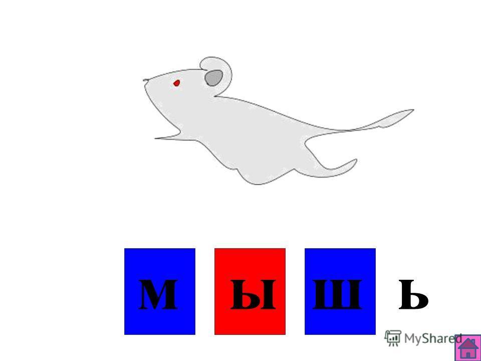 д у б