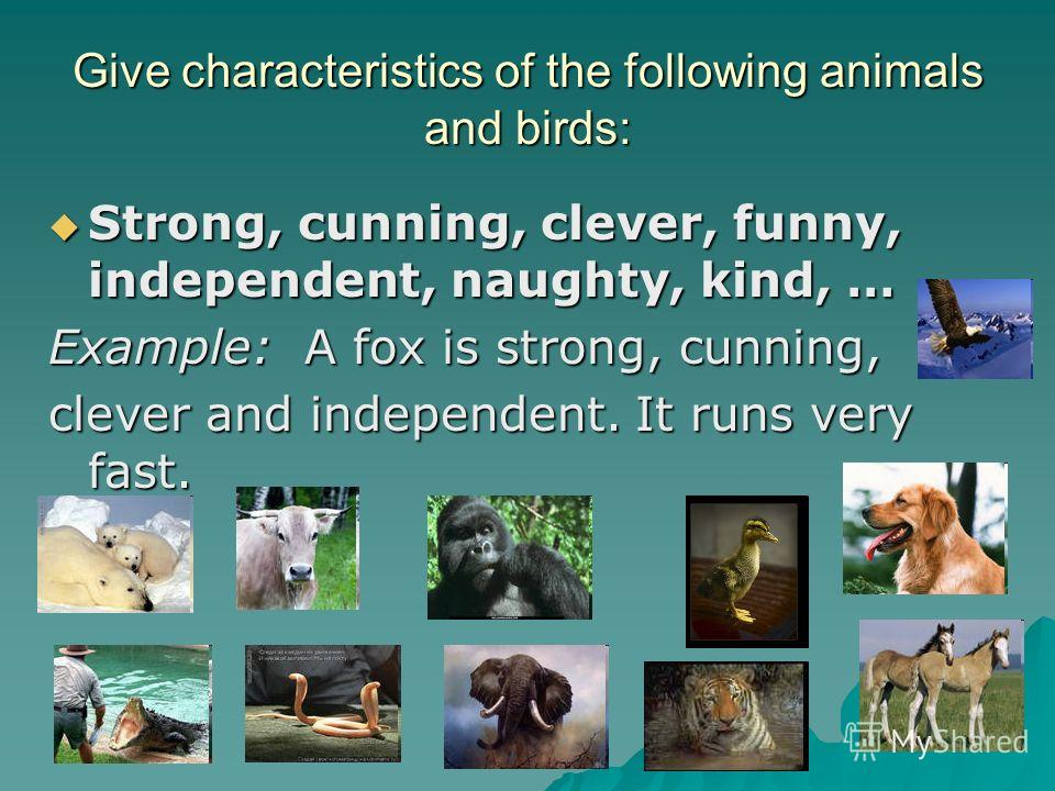 Give characteristics of the following animals and birds: Strong, cunning, clever, funny, independent, naughty, kind, … Example: A fox is s ss strong, cunning, clever and independent. It runs very fast.