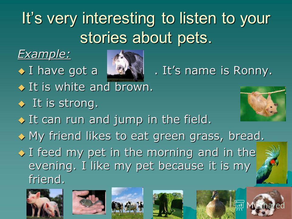 Its very interesting to listen to your stories about pets. Example: I have got a. Its name is Ronny. I have got a. Its name is Ronny. It is white and brown. It is white and brown. It is strong. It is strong. It can run and jump in the field. It can r