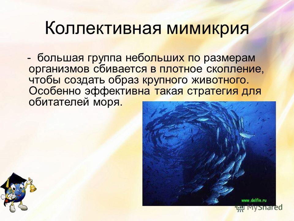 Коллективная мимикрия - большая группа небольших по размерам организмов сбивается в плотное скопление, чтобы создать образ крупного животного. Особенно эффективна такая стратегия для обитателей моря.