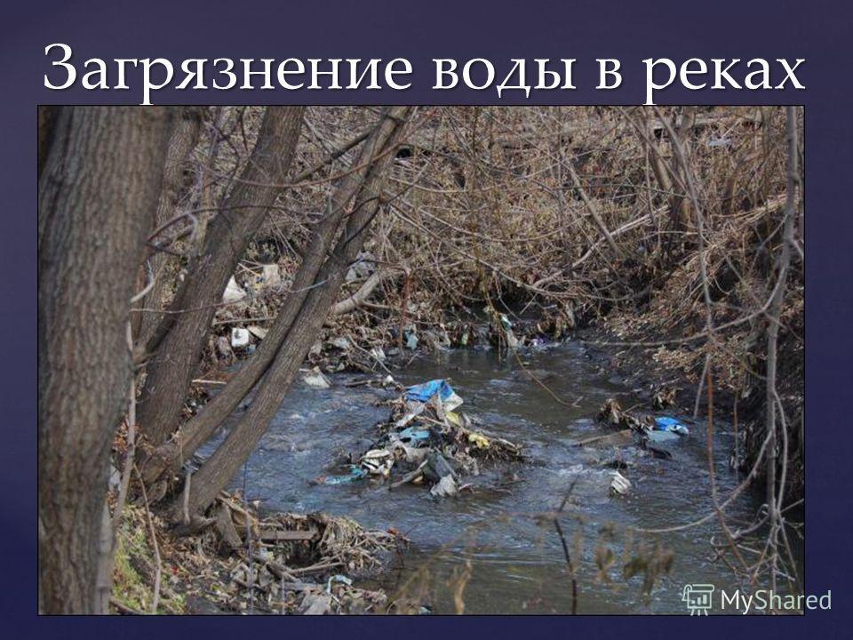 Загрязнение воды в реках