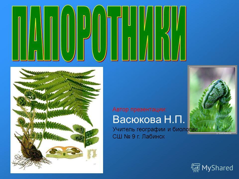 Автор презентации: Васюкова Н.П. Учитель географии и биологии СШ 9 г. Лабинск