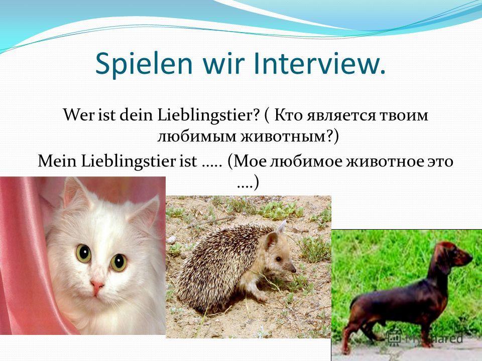 Spielen wir Interview. Wer ist dein Lieblingstier? ( Кто является твоим любимым животным?) Mein Lieblingstier ist ….. (Мое любимое животное это ….)