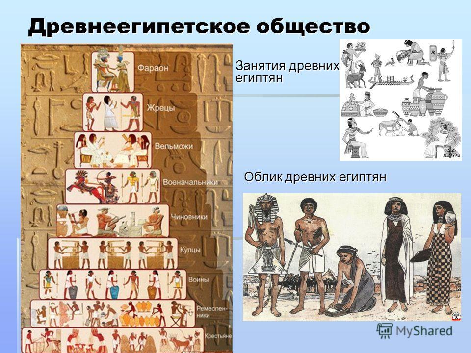Древнеегипетское общество Занятия древних египтян Занятия древних египтян Облик древних египтян