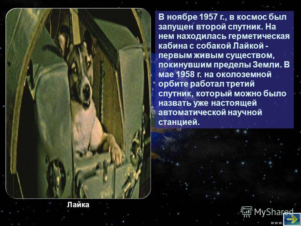 В ноябре 1957 г., в космос был запущен второй спутник. На нем находилась герметическая кабина с собакой Лайкой - первым живым существом, покинувшим пределы Земли. В мае 1958 г. на околоземной орбите работал третий спутник, который можно было назвать