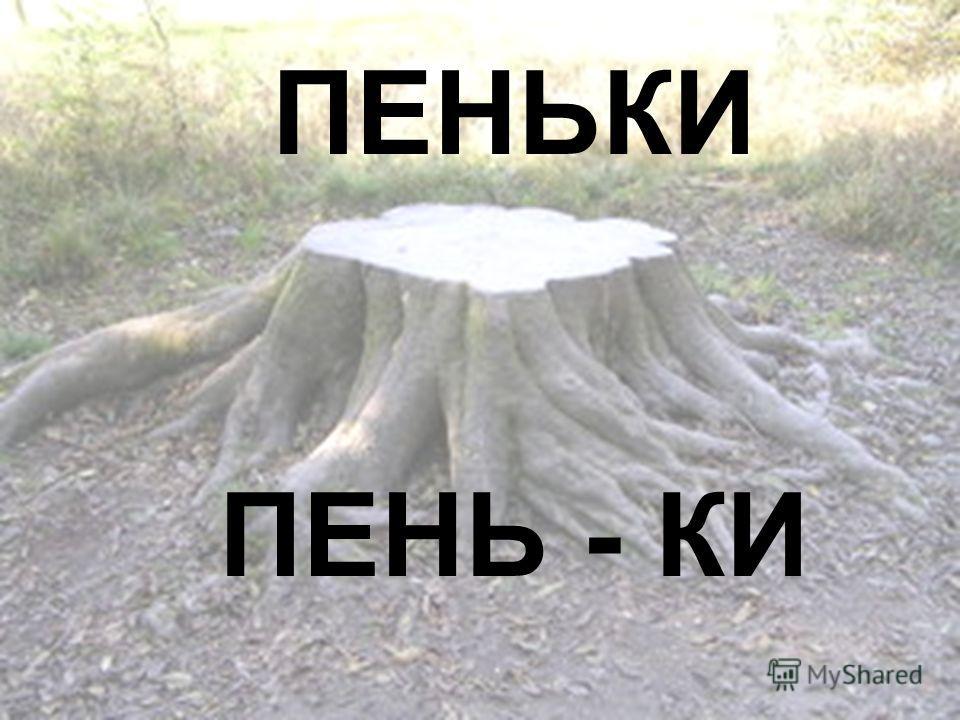ПЕНЬКИ ПЕНЬ - КИ