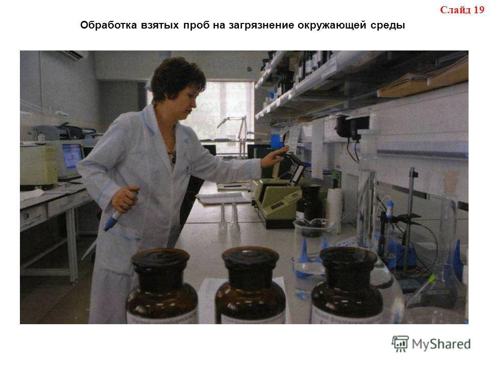 Слайд 19 Обработка взятых проб на загрязнение окружающей среды