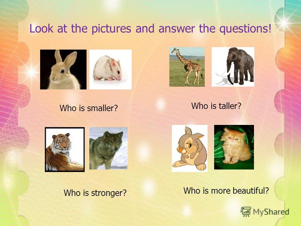 Look at the pictures and answer the questions! Who is smaller? Who is taller? Who is stronger? Who is more beautiful?