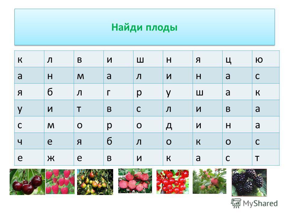 Найди плоды клвишняцю анмалинас яблгрушак уитвслива смородина чеяблокос ежевика ст