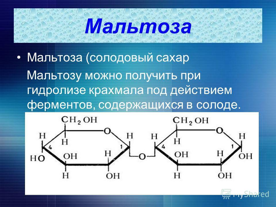 Мальтоза Мальтоза (солодовый сахар Мальтозу можно получить при гидролизе крахмала под действием ферментов, содержащихся в солоде.