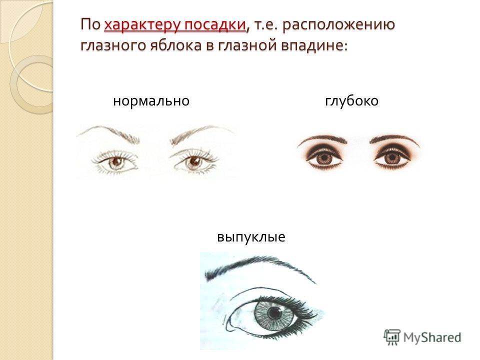 По характеру посадки, т. е. расположению глазного яблока в глазной впадине : нормально выпуклые глубоко