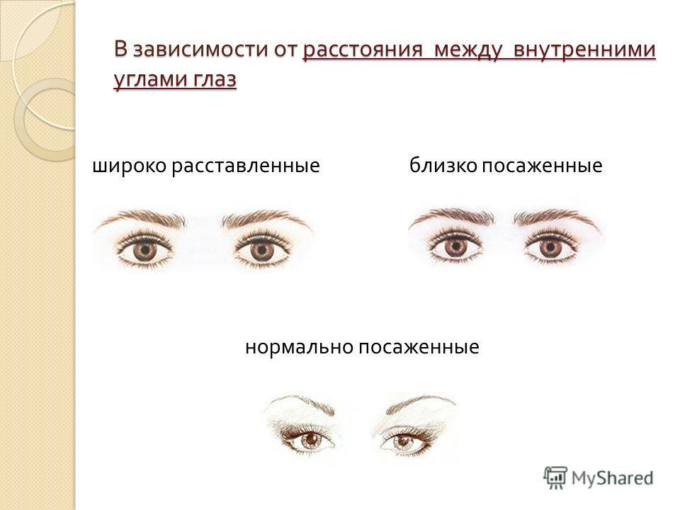 В зависимости от расстояния между внутренними углами глаз широко расставленные близко посаженные нормально посаженные