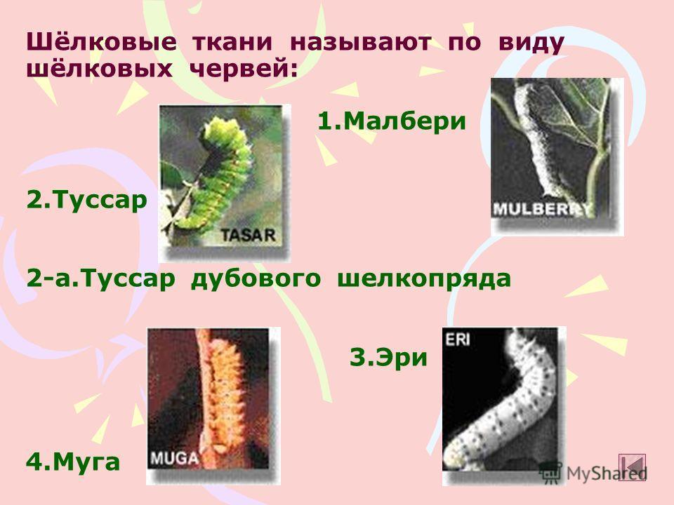 Шёлковые ткани называют по виду шёлковых червей: 1. Малбери 2. Туссар 2-а.Туссар дубового шелкопряда 3. Эри 4.Муга