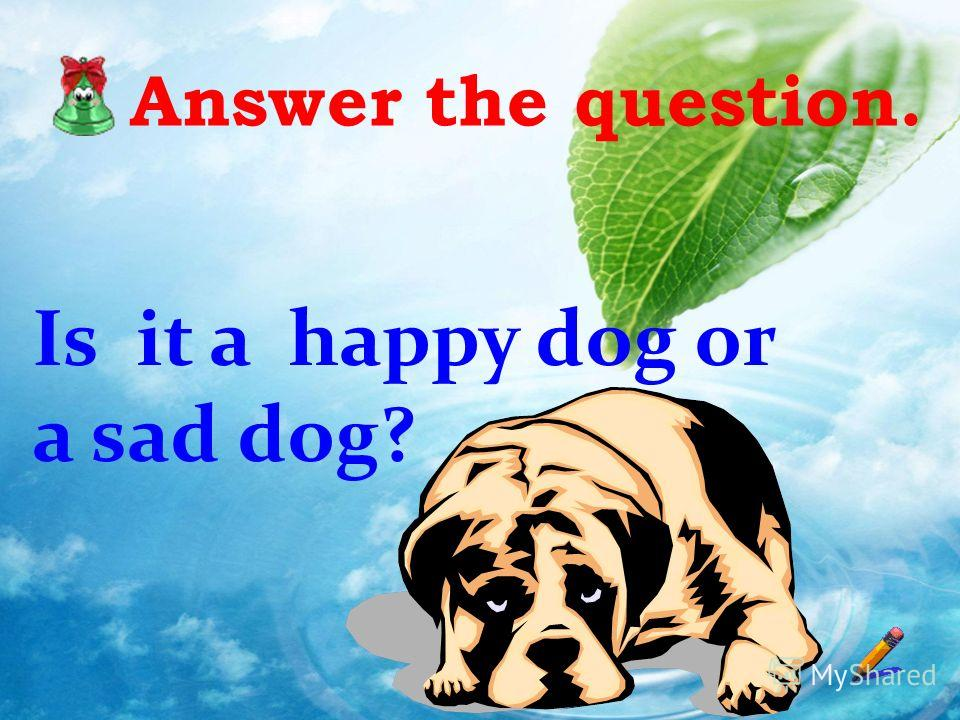 Answer the question. Is it a happy dog or a sad dog?