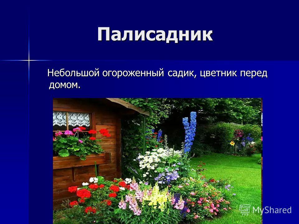Палисадник Палисадник Небольшой огороженный садик, цветник перед домом. Небольшой огороженный садик, цветник перед домом.