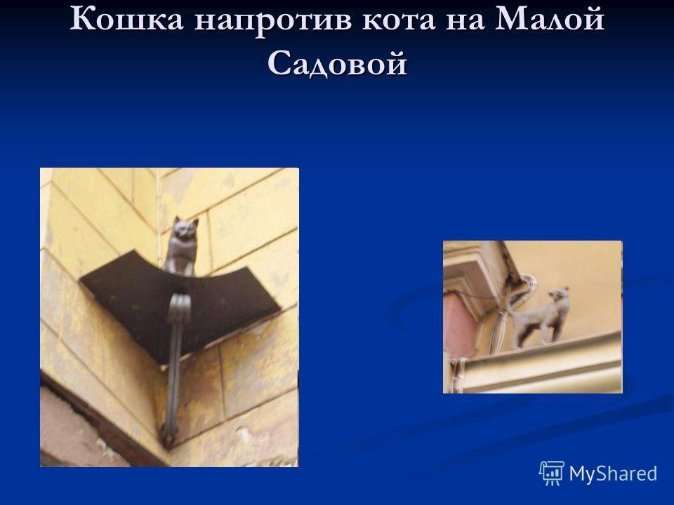 Кошка напротив кота на Малой Садовой