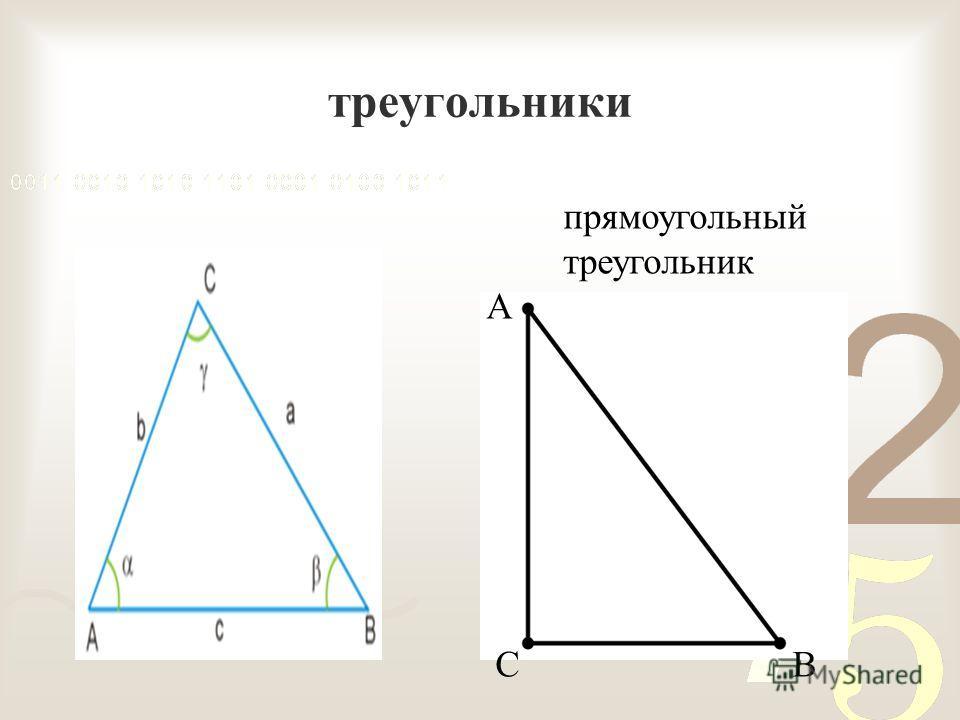 треугольники прямоугольный треугольник А С В