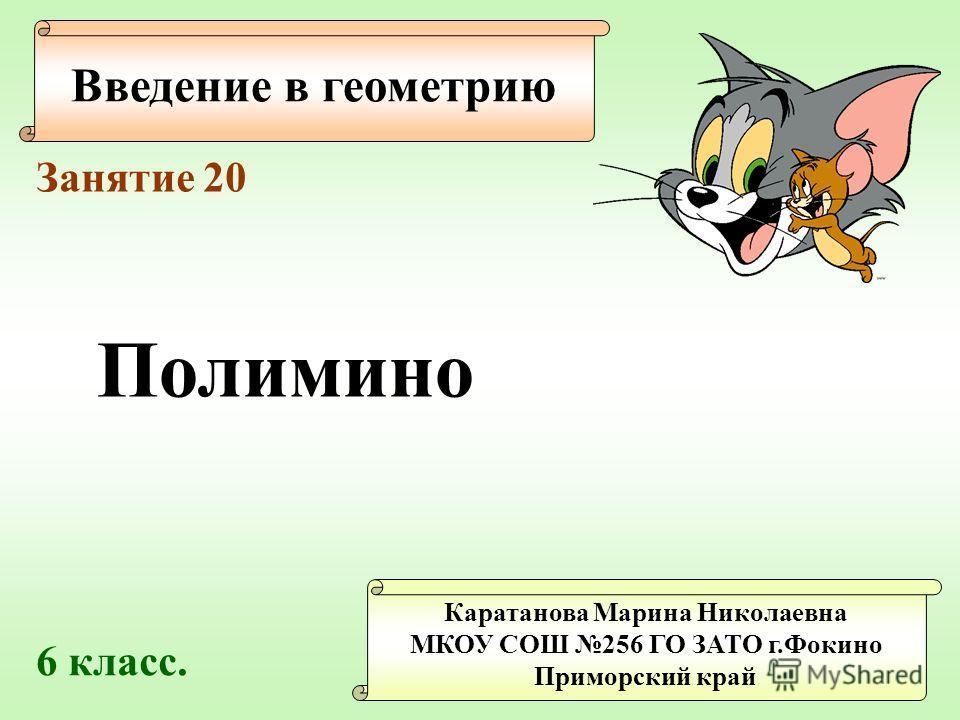 Введение в геометрию Каратанова Марина Николаевна МКОУ СОШ 256 ГО ЗАТО г.Фокино Приморский край Занятие 20 Полимино 6 класс.