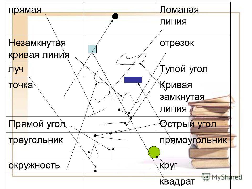 прямая Ломаная линия Незамкнутая кривая линия отрезок луч Тупой угол точка Кривая замкнутая линия Прямой угол Острый угол треугольник прямоугольник окружность круг квадрат