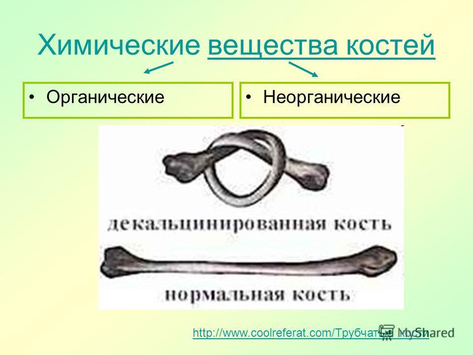 Химические вещества костей вещества костей Органические Неорганические http://www.coolreferat.com/Трубчатые_кости